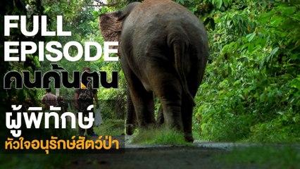คนค้นฅน : ผู้พิทักษ์หัวใจอนุรักษ์สัตว์ป่า | FULL (19 ต.ค.61)