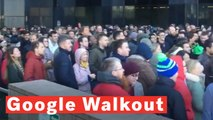 Google Employees Walk Out Over Women's Treatment
