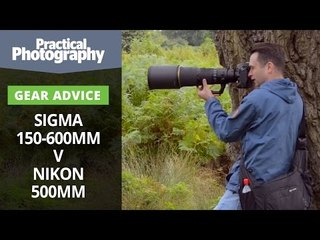 Photography tips - Sigma 150-600mm v Nikon 500mm
