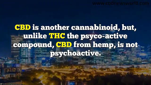 High Quality Cbd Oil Pills For Stomach Problems