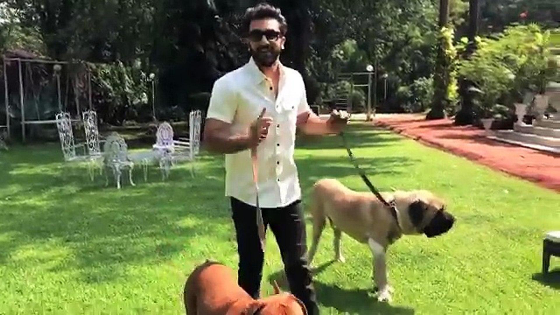 Anushka Sharma Ranbir Kapoor With Dogs Wishing Noise Free Diwali ...