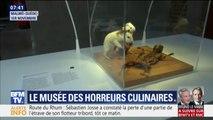 Pénis de taureau, vin de souris, fromage aux asticots... Ce musée présente les pires horreurs culinaires
