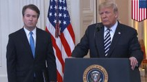 Will the Democrats be able to impeach Trump or Kavanaugh?