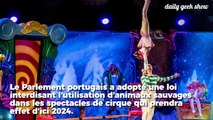 Au Portugal, les animaux sauvages désormais interdits dans les cirques