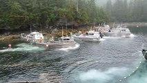 Ouverture de la pêche au saumon à 8h00 - Alaska
