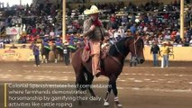 Mexico's extreme sport of horse sliding