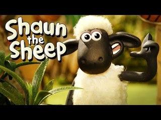 3DTV - Shaun the Sheep