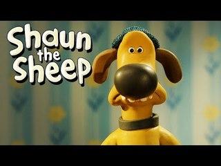 DIY - Shaun the Sheep