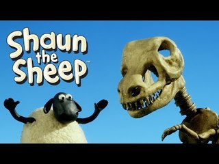 Fossils - Shaun the Sheep
