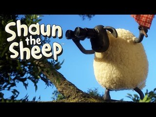 The Rounders Match - Shaun the Sheep