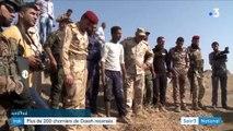 Irak : plus de 200 charniers de Daesh découverts