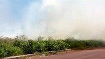Incêndio ambiental toma grandes proporções no Universitário