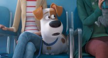 Comme des bêtes 2 Bande-annonce VF (Animation, Comédie 2019) Tiffany Haddish, Harrison Ford