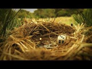 Minuscule - Season 2 (Compilation 15 Minutes) #2