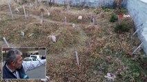 Sultan Murat Yaylası, Doğal Güzelliğinin Yanı Sıra Şehit Mezarlarıyla da Ön Plana Çıkıyor