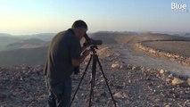 Cet ornithologue palestinien rêve d'inciter Israéliens et Palestiniens à observer davantage les oiseaux