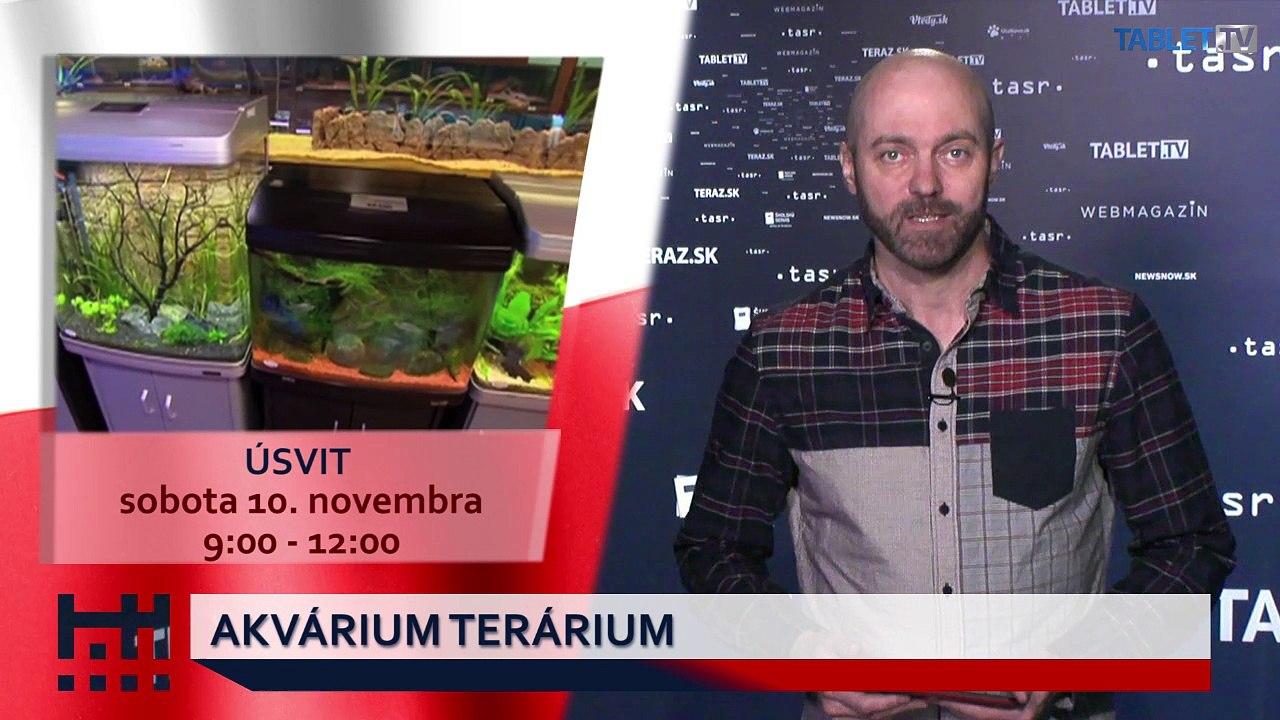 POĎ VON: Akvárium terárium a Deň vojnových veteránov