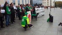Cacerolada frente al Palacio de Justicia por el impuesto hipotecario