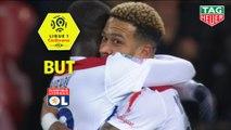 But Memphis DEPAY (73ème) / EA Guingamp - Olympique Lyonnais - (2-4) - (EAG-OL) / 2018-19