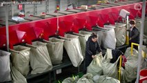 Alibaba Singles' Day tops $30 billion but growth rate plunges