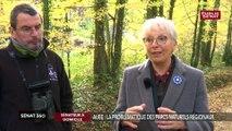 A la découverte du Parc naturel régional de l'Aube avec la sénatrice (UC) Evelyne Perrot