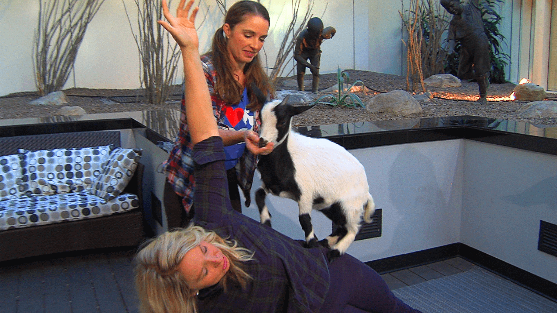 Goat Yoga is the Best Thing You've Never Tried