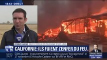 Incendies en Californie : au moins 42 morts