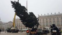 Le sapin de Noël est arrivé place Stanislas à Nancy