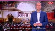 Sécurité, immigration : Christophe Castaner défend le budget 2019 - Les matins du Sénat (14/11/2018)