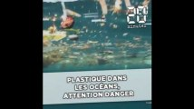 Plastique dans l'océan, attention danger