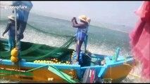 Huge sardine swarm leaps en masse to escape Indian fishermens' nets