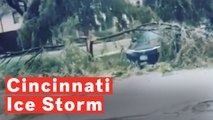 Cincinnati Ice Storm Tears Down Trees, Knocks Out Power