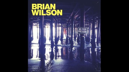 Brian Wilson - Guess You Had To Be There