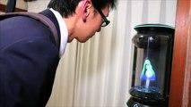 Un homme japonais fête son mariage d'un hologramme