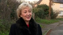 Andrea Leadsom denies she is a Brexit 'pizza plotter'