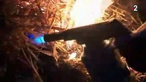 Jura: les viticulteurs allument des feux contre le gel