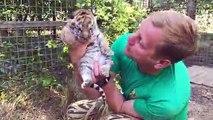Ce dresseur russe nous présente ses bébés tigres adorables