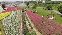 La primavera despierta el turismo interior en China