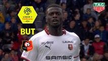 But Mbaye NIANG (35ème) / Toulouse FC - Stade Rennais FC - (2-2) - (TFC-SRFC) / 2018-19