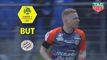 But Florent MOLLET (82ème) / Montpellier Hérault SC - Amiens SC - (1-1) - (MHSC-ASC) / 2018-19