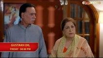 Gustakh Dil - Episode 19 Promo - Express TV Dramas - Arij Fatyma, Affan Waheed