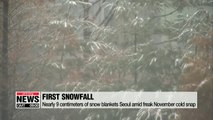Nearly 9 centimeters of snow blankets Seoul amid freak November cold snap