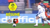 Montpellier Hérault SC - Stade Rennais FC (2-2)  - Résumé - (MHSC-SRFC) / 2018-19