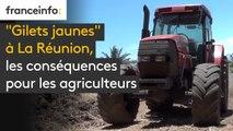 """""""Gilets jaunes"""" à La Réunion, les conséquences pour les agriculteurs"""