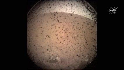 Mars InSight Team Discuss Successful Landing with Media