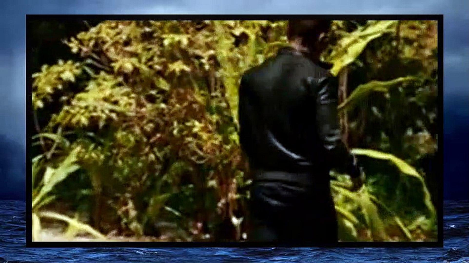 Graceland S03E04