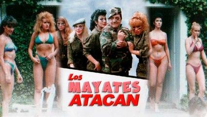 Los Mayates atacan