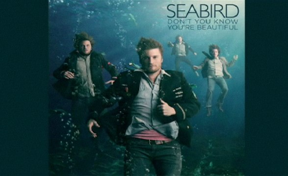 Seabird - Don't You Know You're Beautiful