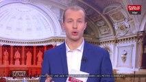 Budget 2019 : le Sénat adopte la première partie sur les recettes de l'Etat - Les matins du Sénat (30/11/2018)