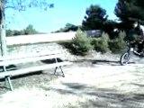 BMX EN WEELING